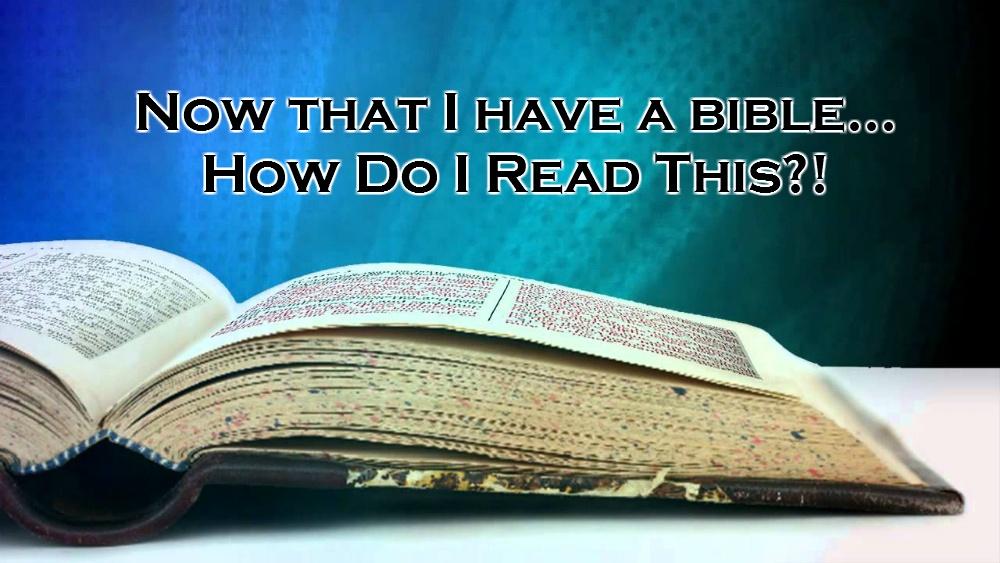 True Israelite Basics how do I read the bible?
