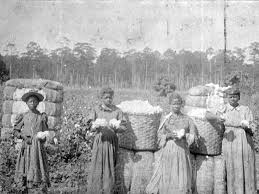 Daughters of Sarah even in slavery wore skirts