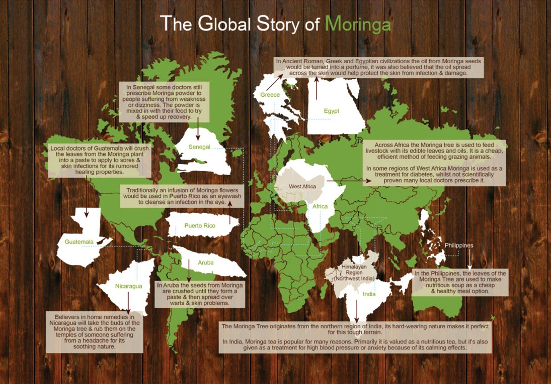 where does Moringa grow?